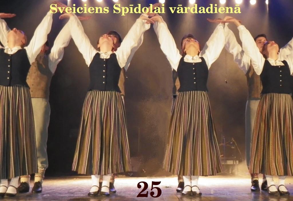 0_2014_SpidolasDiena_43